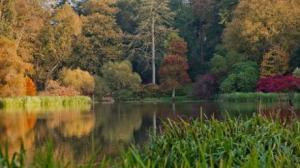 209_105_Mount_Stewart_lake_940x529_thumb_460x0,0