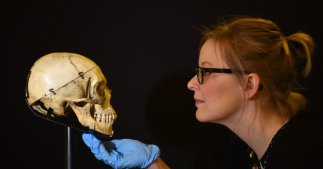 Zoë Wilcox, lead curator of Shakespeare in Ten Acts, adjusts a human skull given to Sara Bernhardt by Victor Hugo. On loan from the V&A. © Clare Kendall