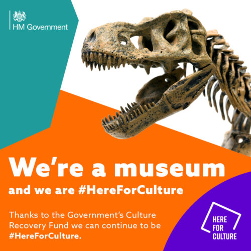 """We're an arts venue and we are here for culture"" text on a here for culture branded background with images of a museum exhibit"