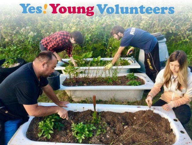 Young volunteers working outdoors in a garden