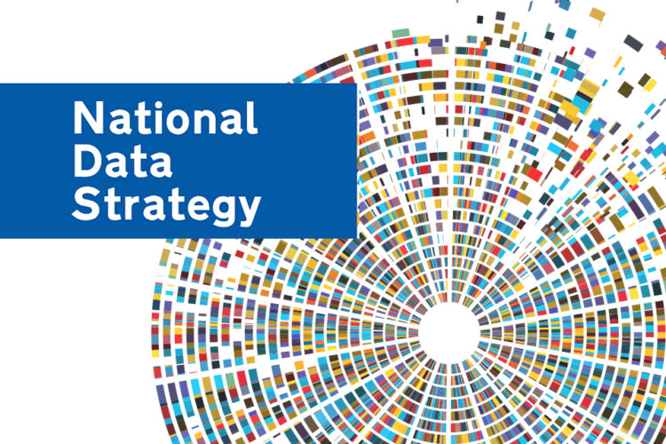National Data Strategy
